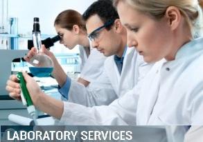 lab service 2 1