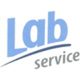 logo-lab-services-encart
